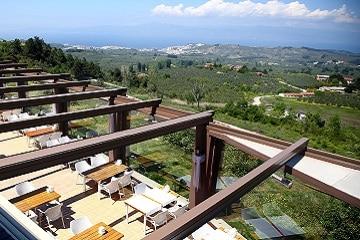 Proyecto: Terraza de un Hotel (Torrevieja - Alicante) 2